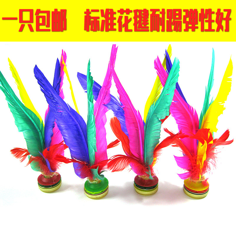 Free shipping new health large colored feather shuttlecock shuttlecock feather shuttlecock shuttlecock game spline thickened tendon at the end wear and high elasticity