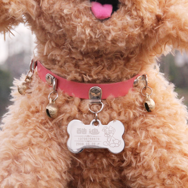 Free shipping teddy bell collar dog collars dog collar custom stainless steel dog tag pet id tags dog tag dog collar