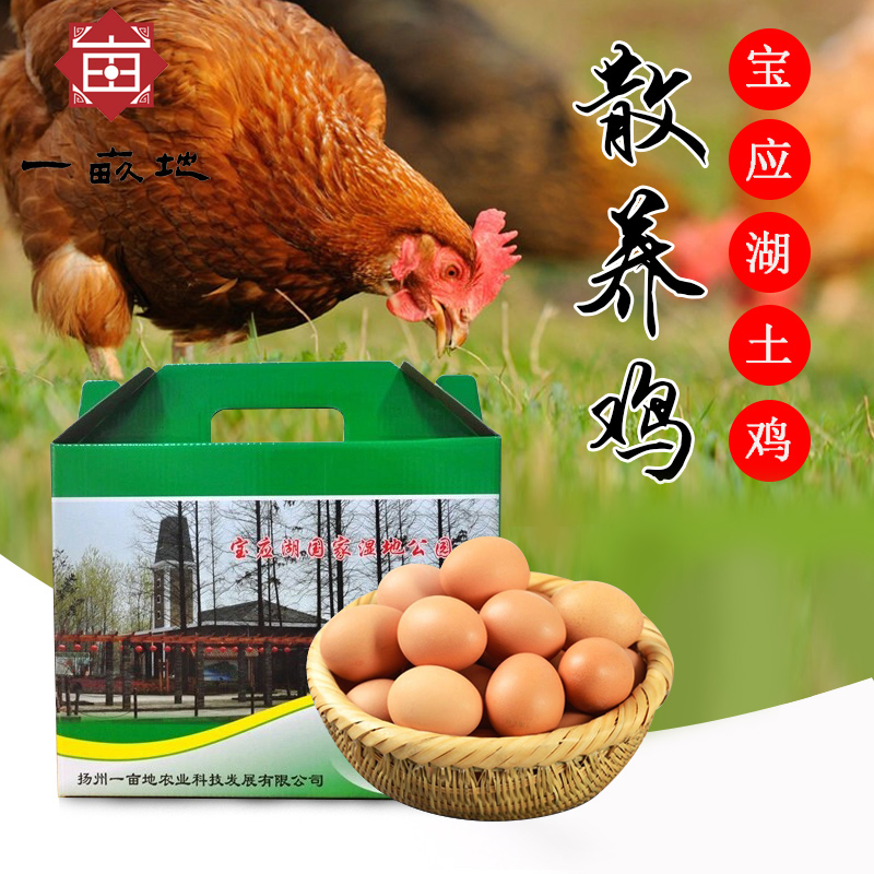 Genuine one mu with newborn baby head nest egg eggs soil eggs egg farm backyard chaijidan gift box packaging Box
