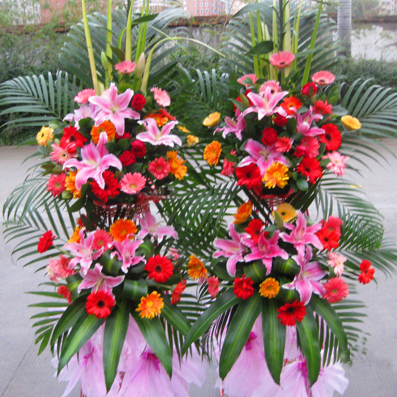 Hangzhou opening celebration housewarming beijing shenzhen flowers chengdu shanghai opened baskets baskets quanzhou fuzhou courier nationwide