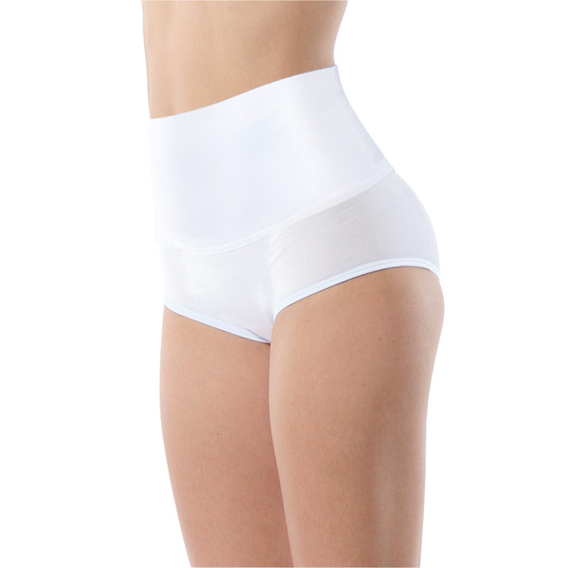 Kevin dover kvf ms. bamboo fiber female waist and abdomen abdomen hip briefs underwear female body