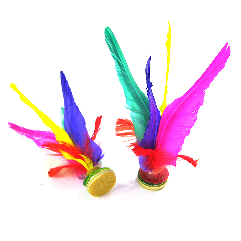 Large shipping new health shuttlecock shuttlecock game with colored feather shuttlecock shuttlecock feather shuttlecock shuttlecock feather key match