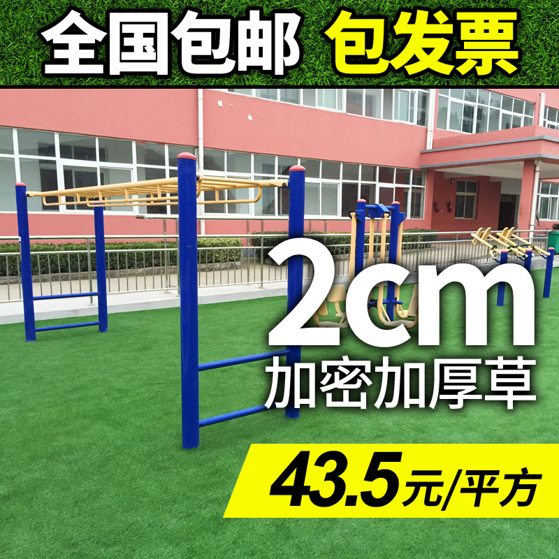 Lawn turf artificial turf artificial turf fake plastic grass lawn school roof positronic taiwan 20mm encryption thick