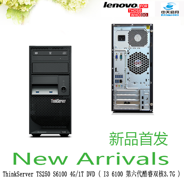 Lenovo ThinkServer4U TS250 i34150å4160 6100 tower server 4g 1 t dvd specials