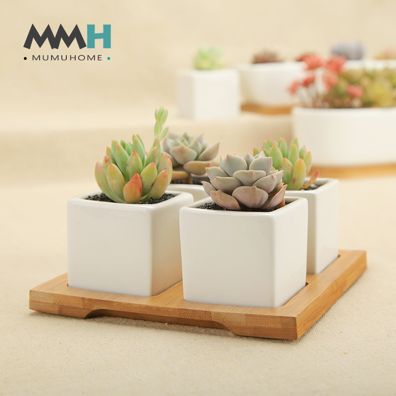 Mumuhome combination of white porcelain pots and more meat and more meat plants with bamboo tea tray creative ceramic porcelain flower kit meat meat