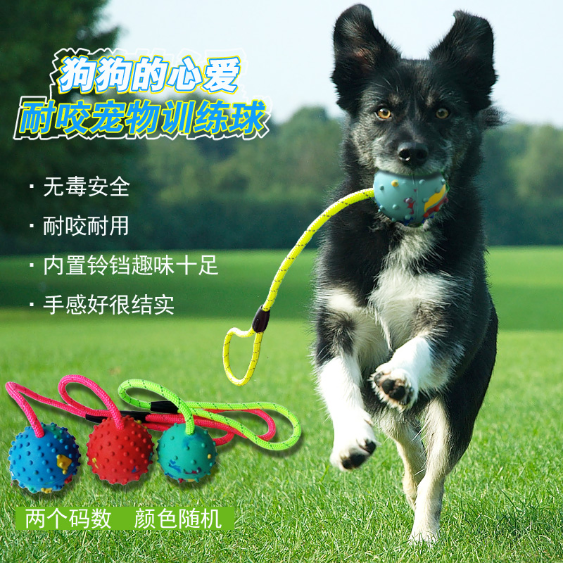 Pet toy ball molar dog bite resistant rubber ball hollow ball bouncing ball with a bell with rope dog training dog training supplies