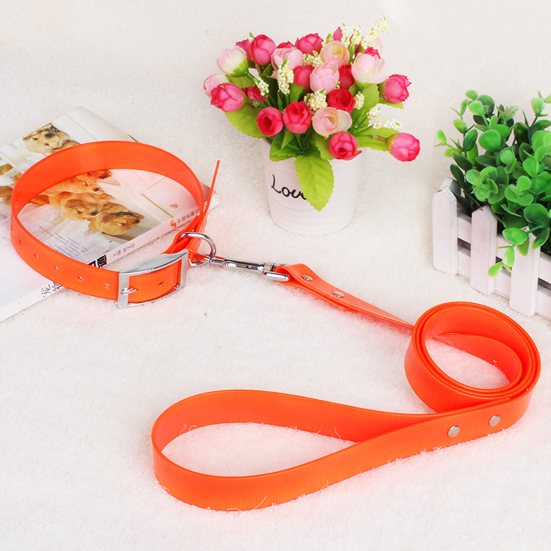 Pinter dog leash collar suit tpu chain large dogs medium dogs dog dog rope pet supplies
