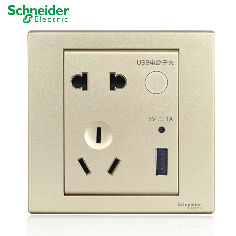 Schneider wishful champagne fifth hole socket usb socket panel with usb charging socket with switch genuine