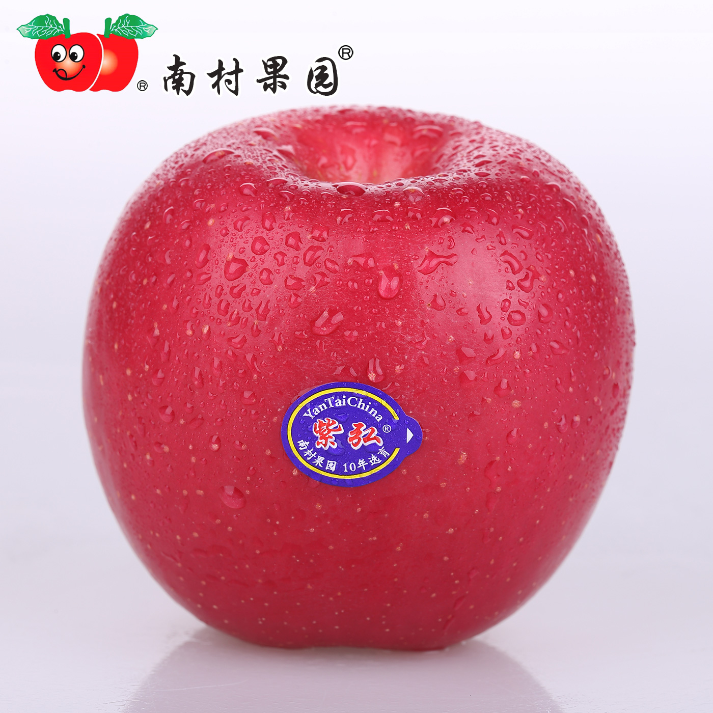 Shandong yantai red fuji apple orchard south village purple hong 8 kg 12 pcs special production of fresh apple fruit qixia