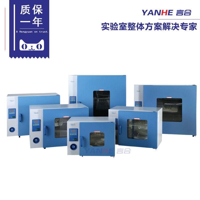 Shanghai a constant electric blast oven DHG-9053A/electrothermostat/thermostatic oven/oven