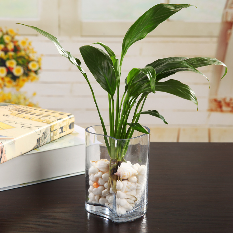 China Mini Flower Vase China Mini Flower Vase Shopping Guide At