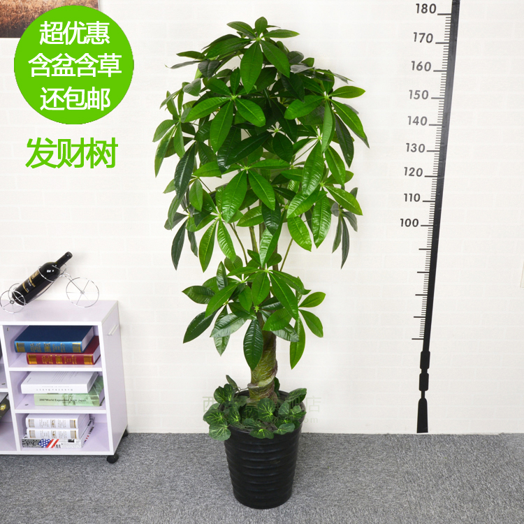 Simulation tree simulation fake tree pachira green green plant floor living room decorative artificial flowers silk flower potted plastic pots king