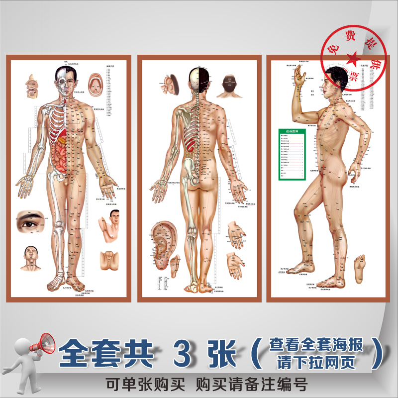 Standard body acupuncture meridian points flipchart posters chinese culture full range of health care acupuncture points chart