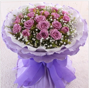 Tianjin city express flower delivery 33 19朵purple rose woman's day bouquet of flowers birthday flower delivery flower shop flowers