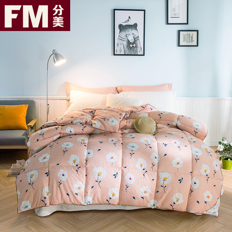 Us sub thick warm winter wear velvet double spring is the core student dormitory single quilt air conditioning was winter