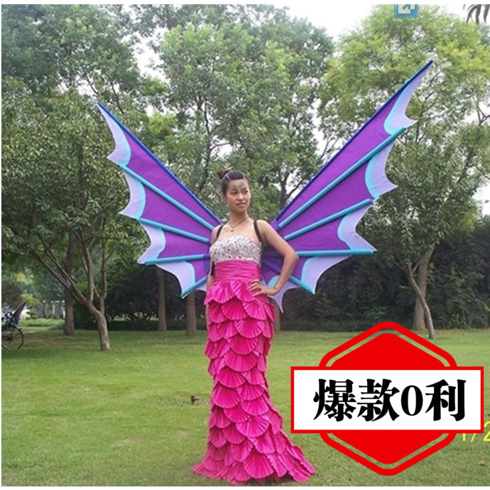 Victorian wings wings angel wings catwalk stage photography window background wall hangings decorated