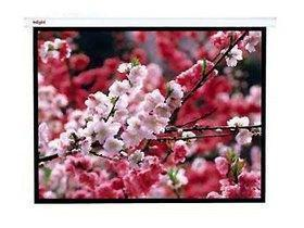 The new red leaf 4:3 electric remote control projector screen white plastic 300 inch